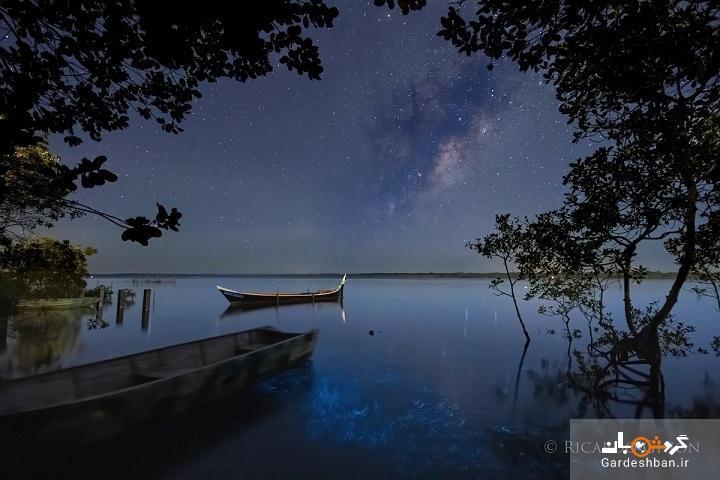 کهکشان راه شیری و آب های درخشان برزیل در یک قاب