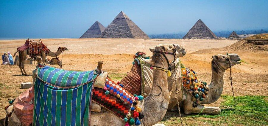 مصر تا 2 سال دیگر نیز پذیرای گردشگران نیست