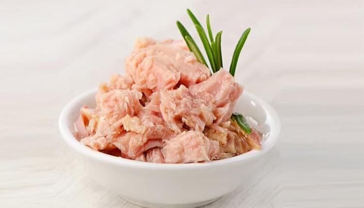 طرز تهیه انواع غذا با تن ماهی؛ 10 پیشنهاد لذیذ