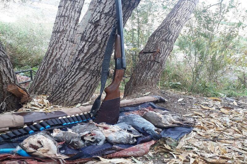 خبرنگاران 6 شکارچی متخلف در اشنویه دستگیر شدند