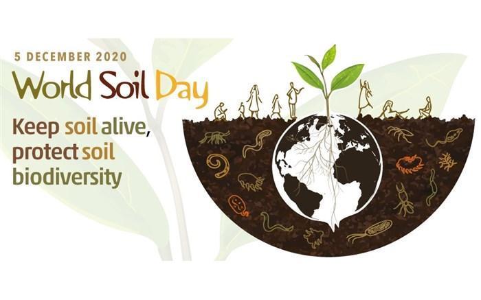 فائو در زمینه بهبود پایداری خاک از ایران حمایت می نماید