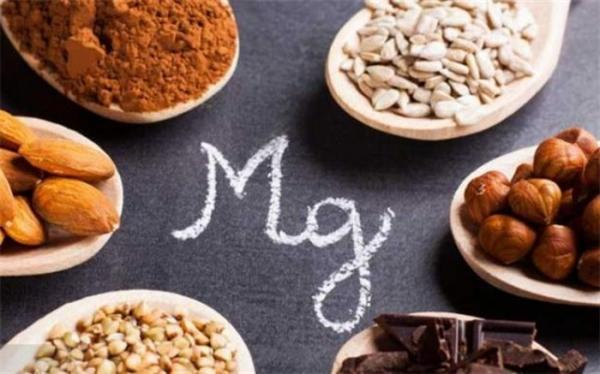 موادغذایی که منیزیم بدن را تامین می کند