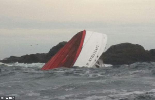 ویزای کانادا: واژگونی غم انگیز قایق بازدیدکنندگان نهنگ در آبهای کانادا